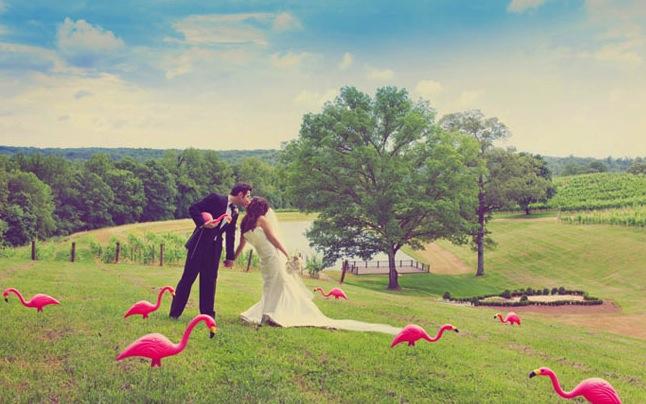 flamingo GWS